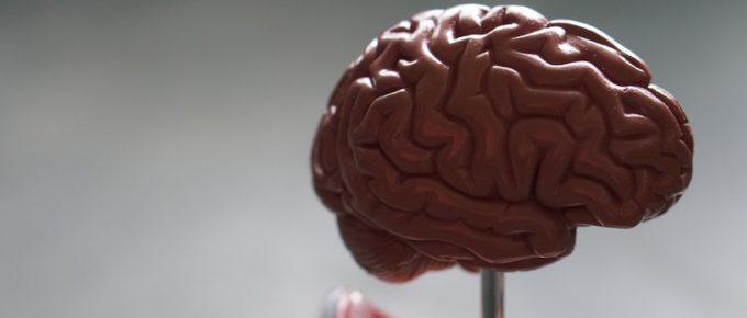 Improve your memory brain