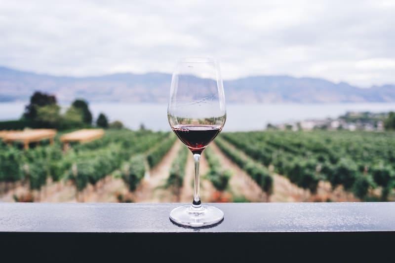 Una copa de vino para tener una piel impecable